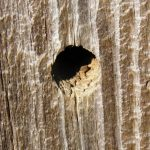 A simple hole drilled into wood is ok for small items but is not the most stable of hanging options